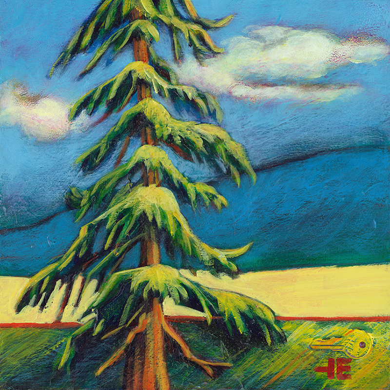 """An acrylic painting of a ""Douglas Fir Tree"" by Canadian artist Theresa Eisenbarth"""