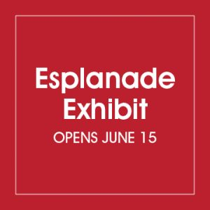 Esplanade Art Exhibition 2020